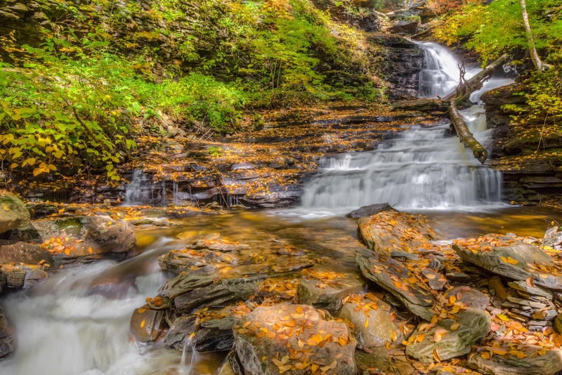 Ricketts Glen  - photo by Chris Clements